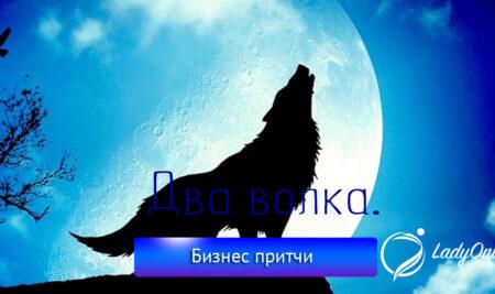 Притча про двух волков.